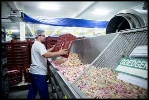 De snoepindustrie maakt deel uit van de levensmiddelennijverheid
